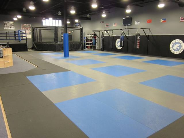 kung-fu_karate_brazilian jiu jitsu_bjj_muay thai_kickboxing_boxing_aikido_jujutsu_kali_escrima_classes_in_west_hartford_ct_connecticut