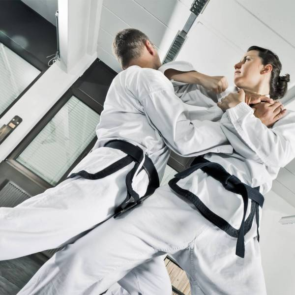 karate kenpo west hartford ct plus one defense systems