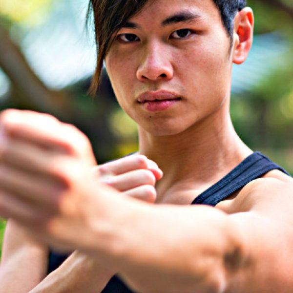 kung fu header